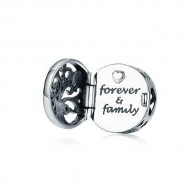 Sterling silver charm Forever family